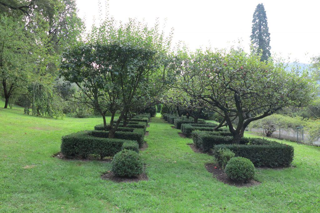 Giardino privato, M.G. Campagnani, Luino
