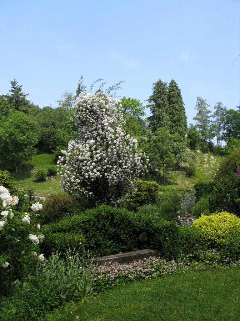 Giardino privato, M.G. Campagnani Brezzo di Bedero