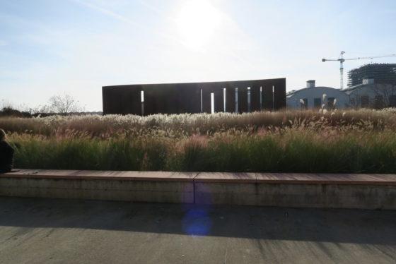 Due mostre all'Hangar della Bicocca tra luce e natura